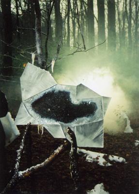 """Spiegel aus Eis, Sachgeschichte """"Tiere im Winter"""""""